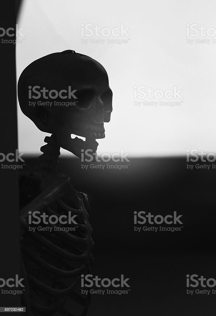 Horror, cruelty, death concept :human skulls leave on the wall stock photo