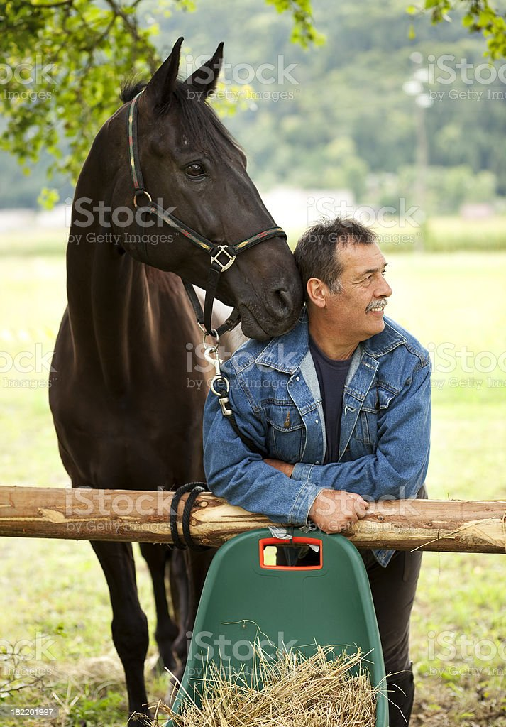 Horse and a Man stock photo