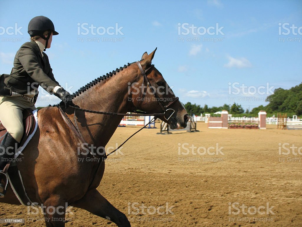horse and a rider on  equestrian  hunter show stock photo