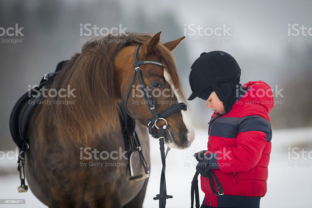 Horse and boy - child riding horseback in winter stock photo