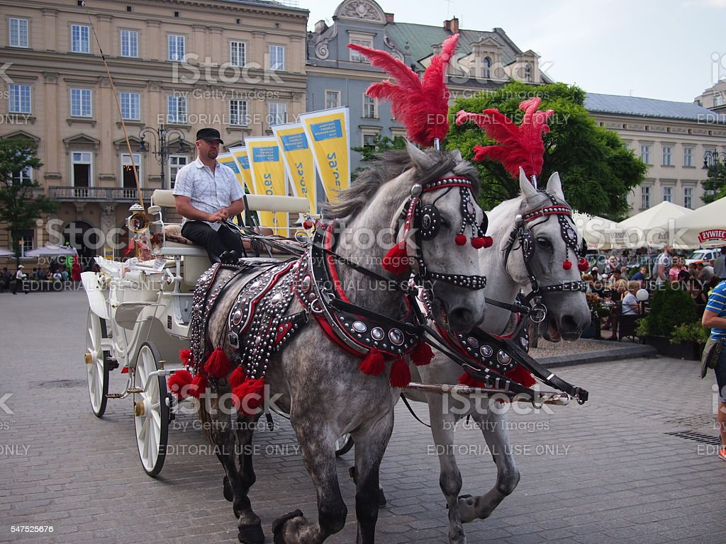 Horse and carriage in Krakow stock photo
