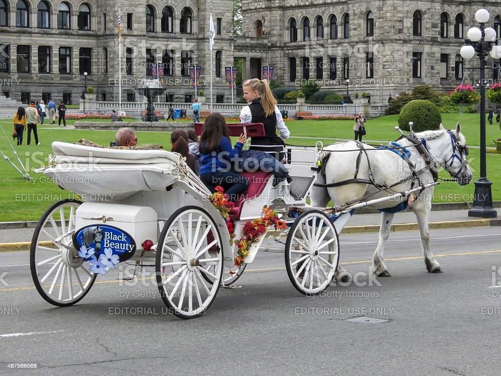Horse and Carriage in Victoria stock photo