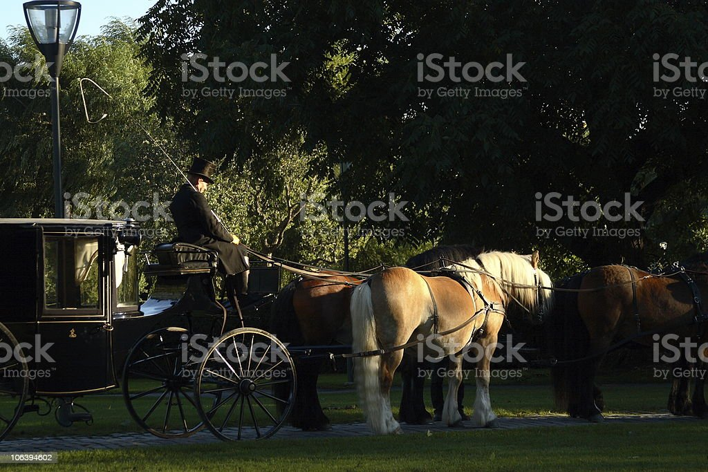 Horse and carriage riding royalty-free stock photo