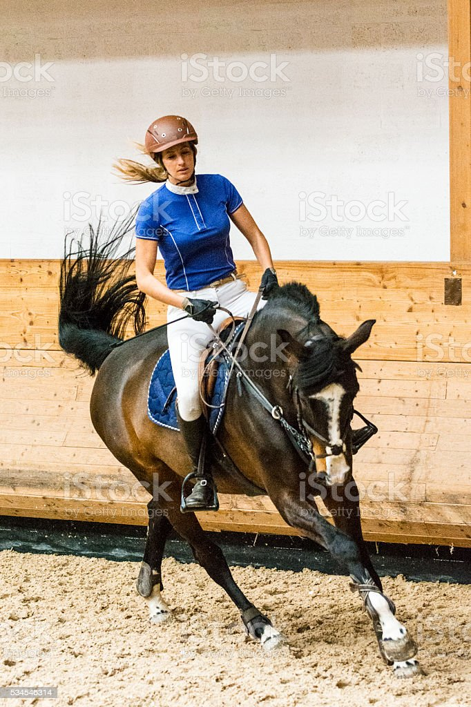 Horse and female show jumping rider on training stock photo