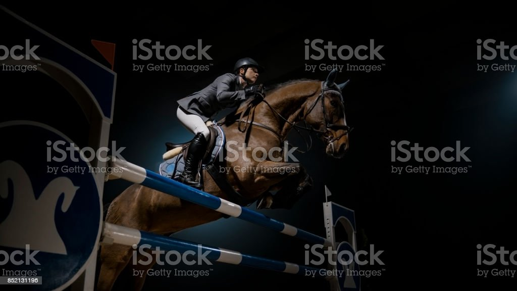 Horse and his rider jumping rail in arena stock photo