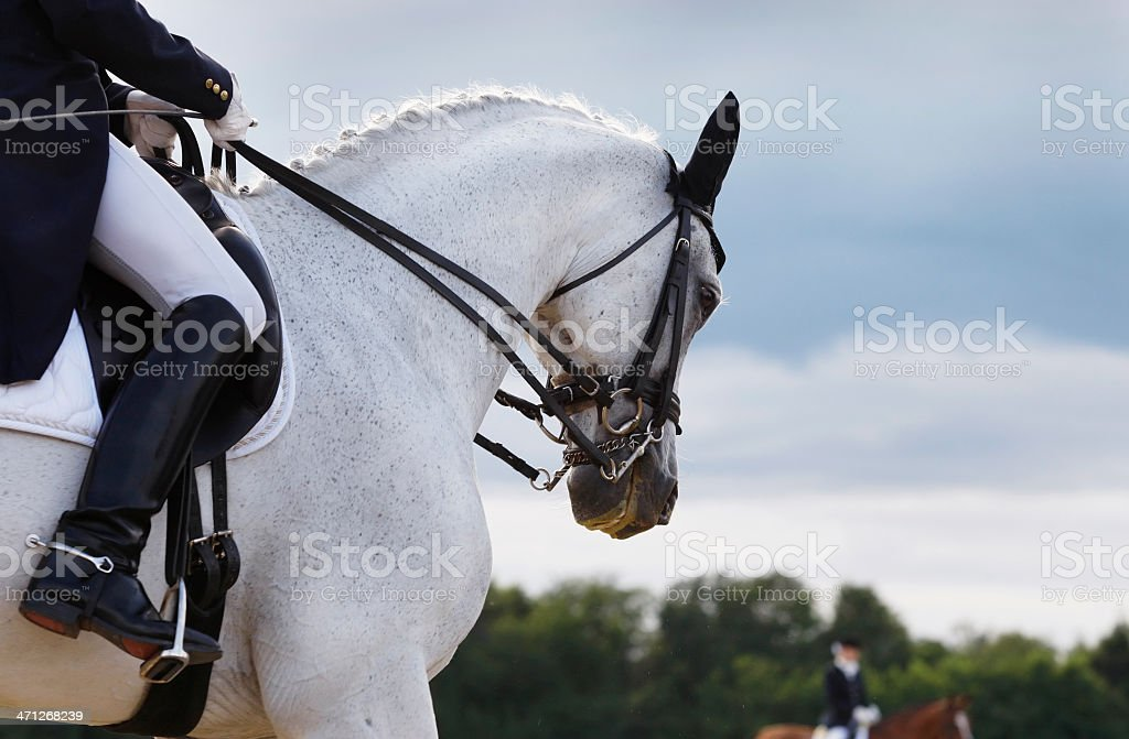 Horse and horse rider competing in dressage stock photo