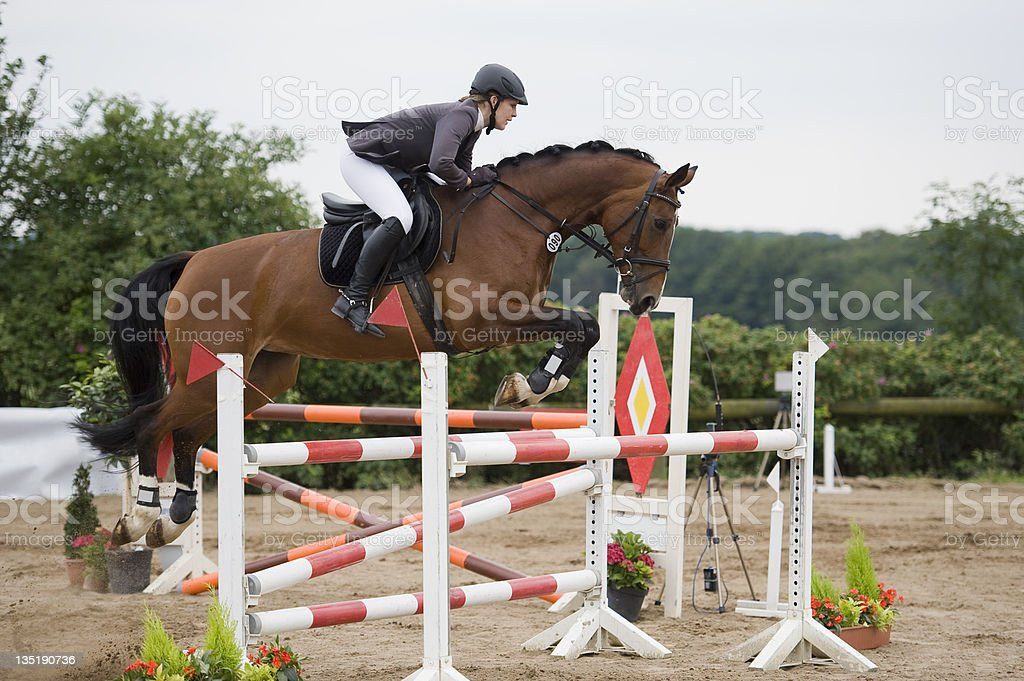 Horse and jockey performing jumps stock photo