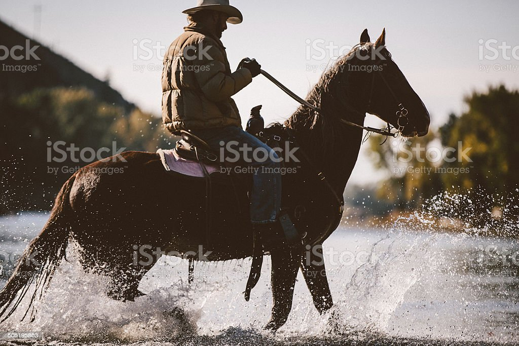 Horse and male rider wade in water along river bank royalty-free stock photo