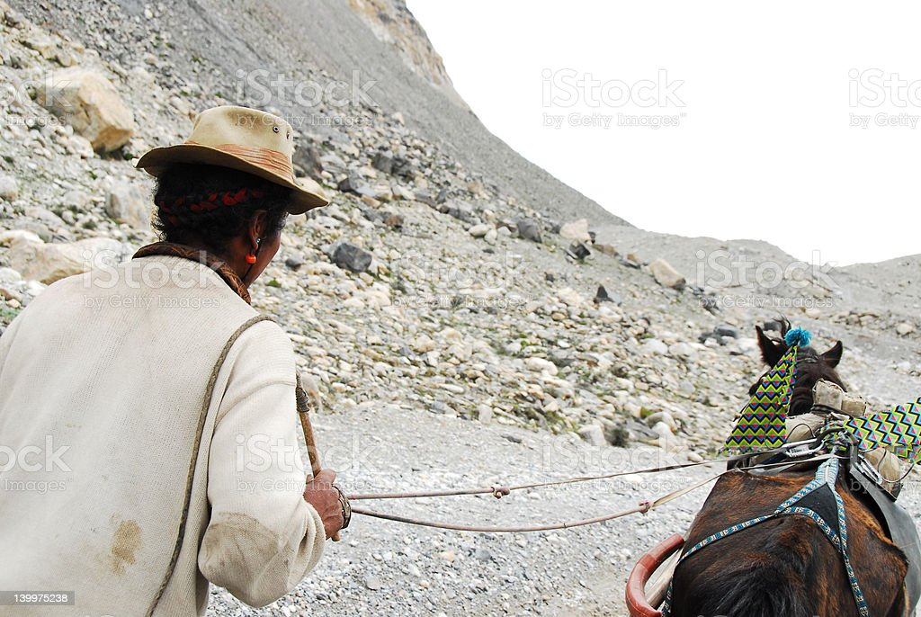 Horse and owner in the Himalayas royalty-free stock photo