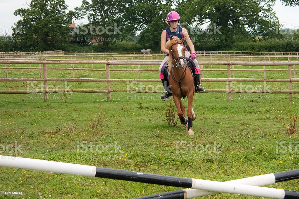 Horse and rider approaching a jump outdoors royalty-free stock photo