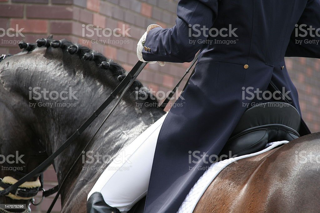 Horse and rider at dressage competition stock photo