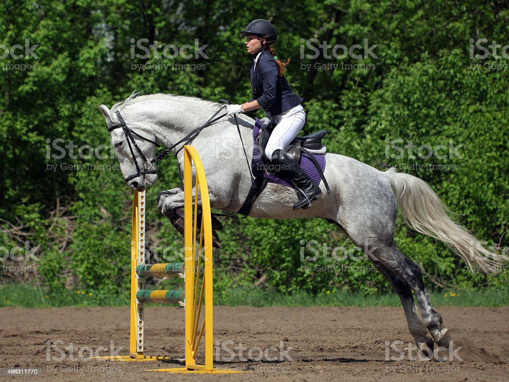 Horse and rider at jumping stock photo
