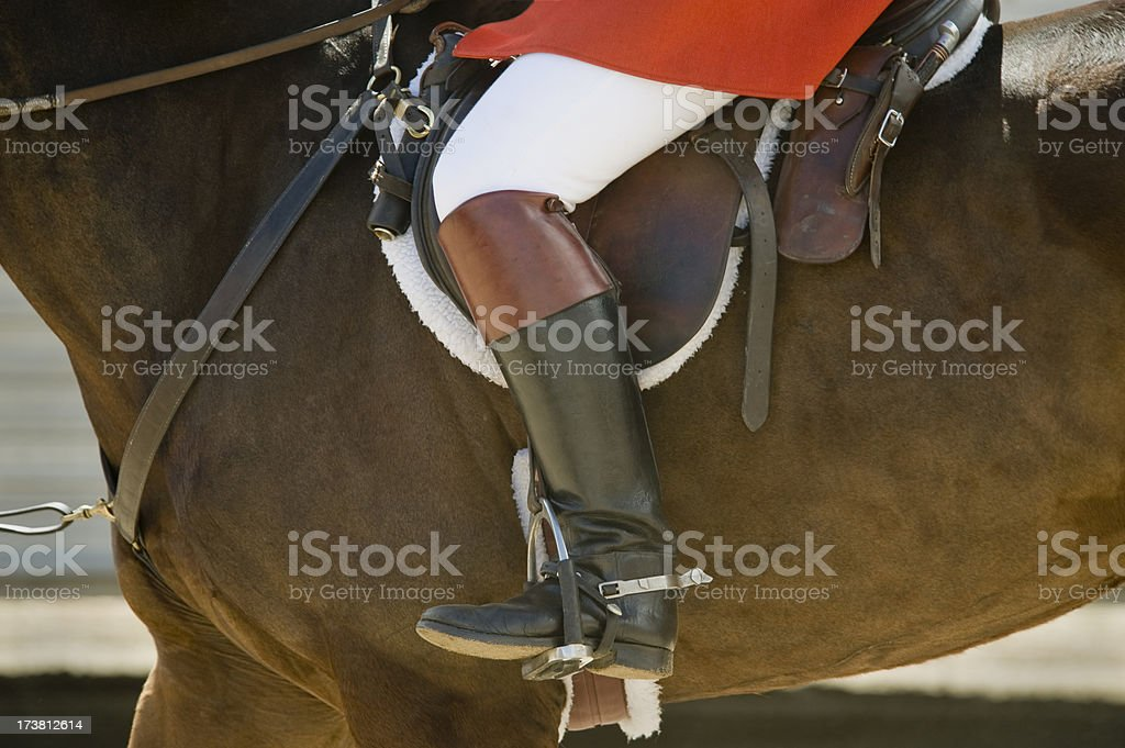 horse and rider detail stock photo