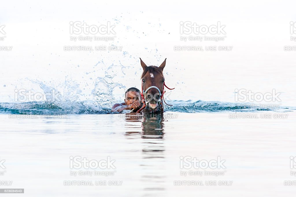 Horse and Rider going out from the sea stock photo