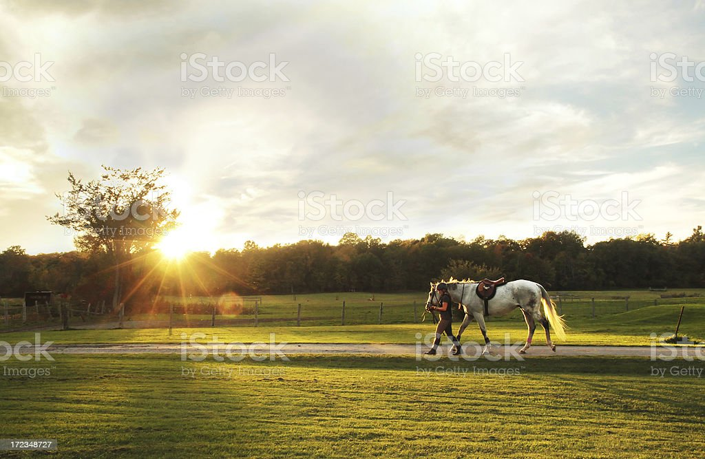 Horse and Rider in Sunset stock photo