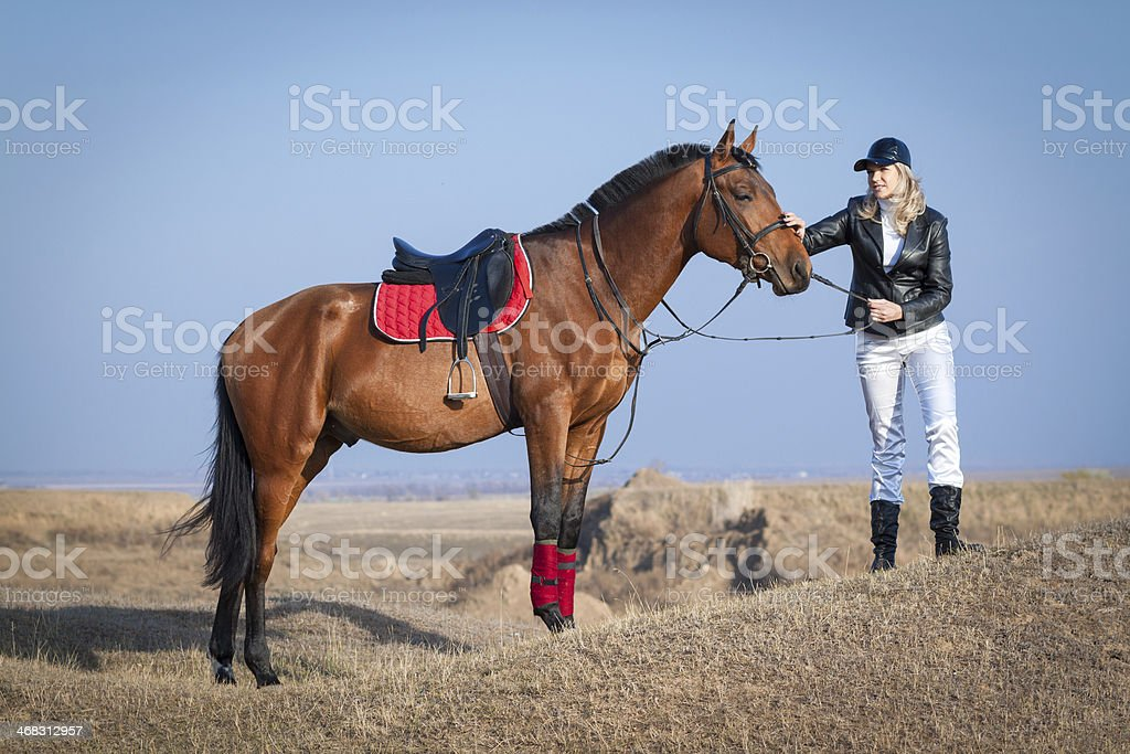Horse and rider on the sky background royalty-free stock photo