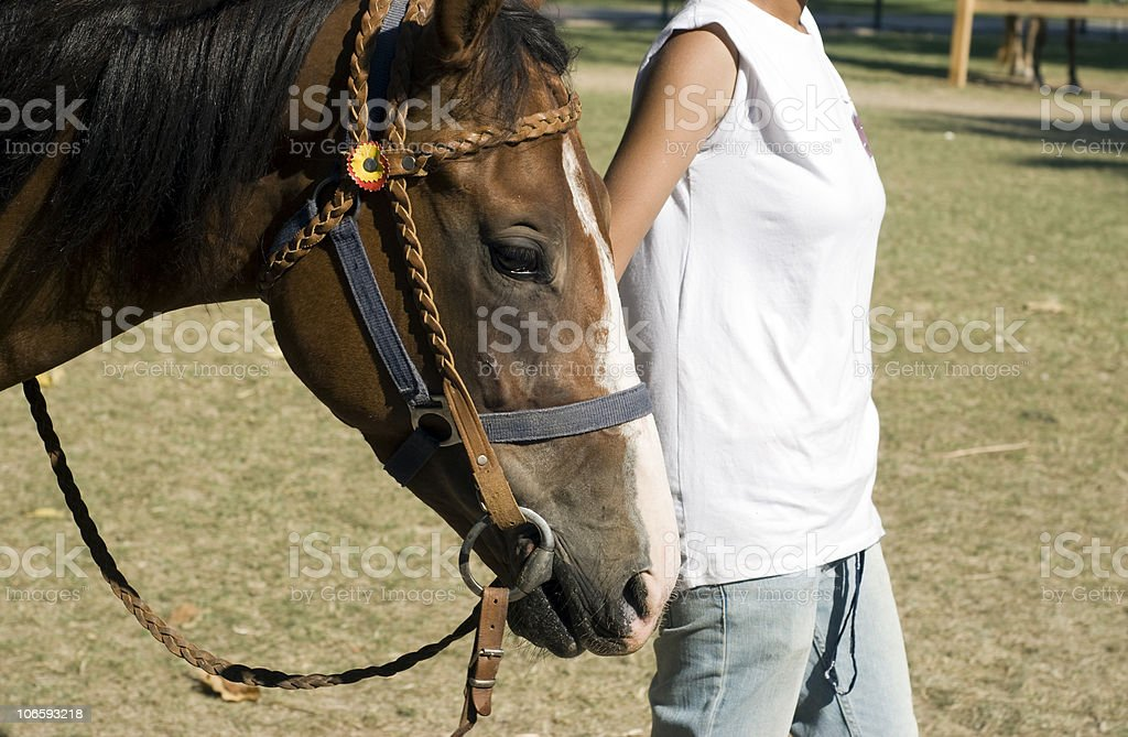 Horse And Rider stock photo