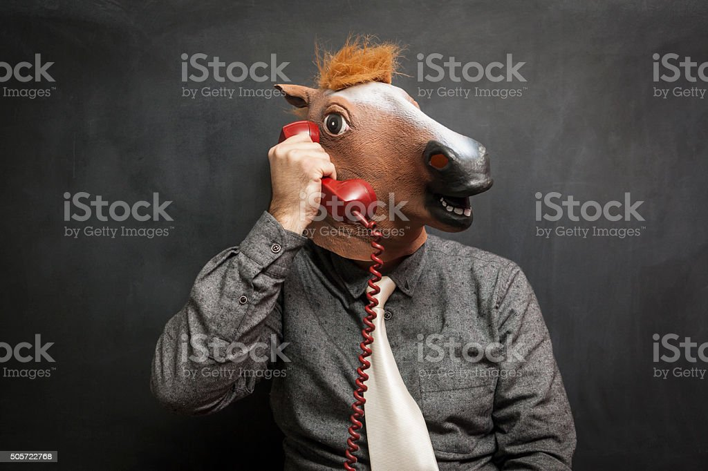 Horse at office stock photo