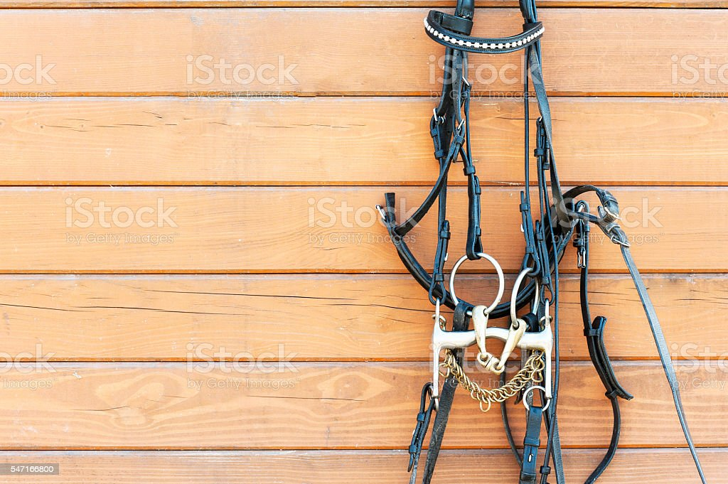 Horse bridle with decoration hanging on stable wooden wall. stock photo