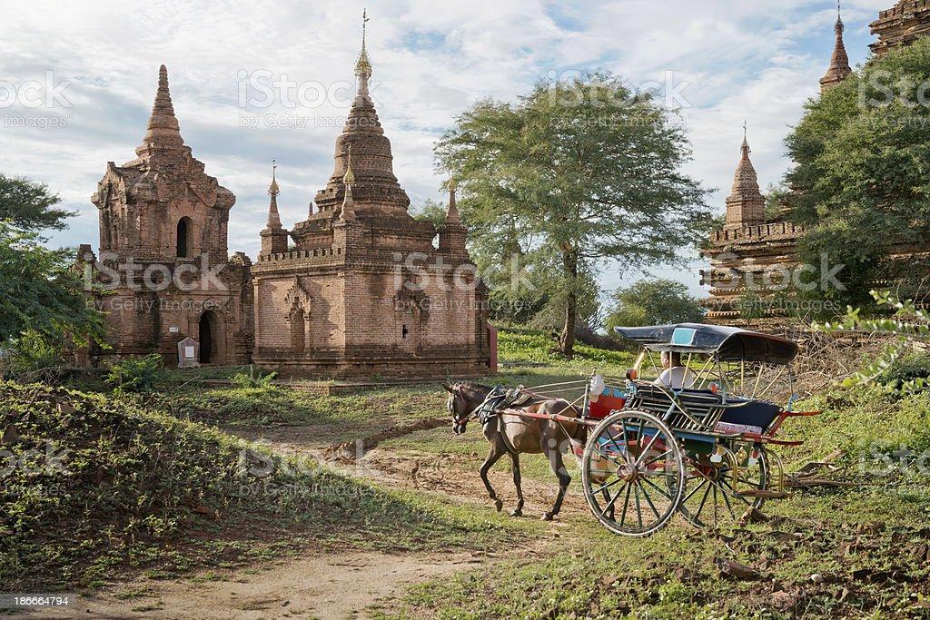 Horse Buggy At Bagan stock photo