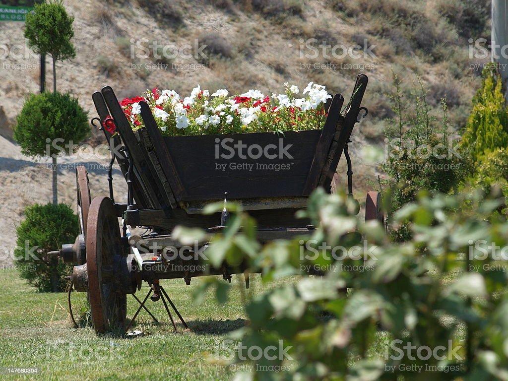 horse car royalty-free stock photo