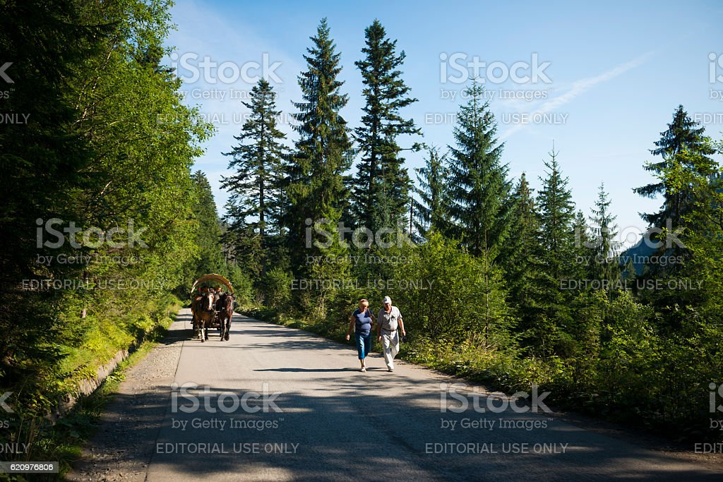Horse carriage and hikers on road to Morskie Oko, Poland stock photo