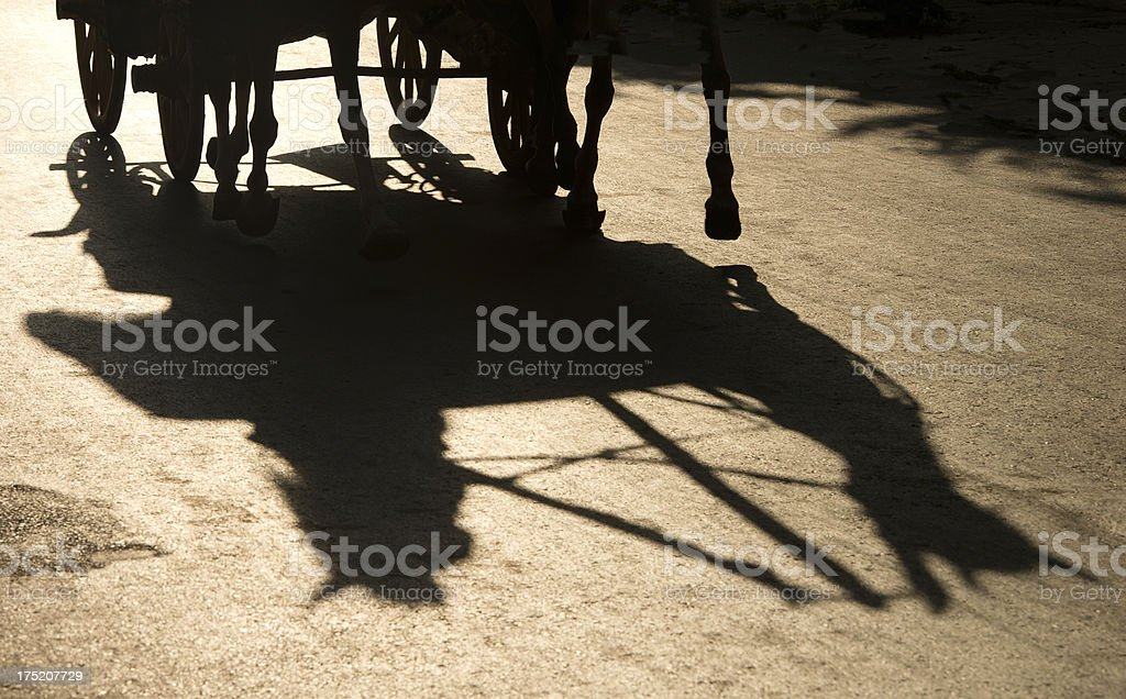 horse carriage and shadow. royalty-free stock photo
