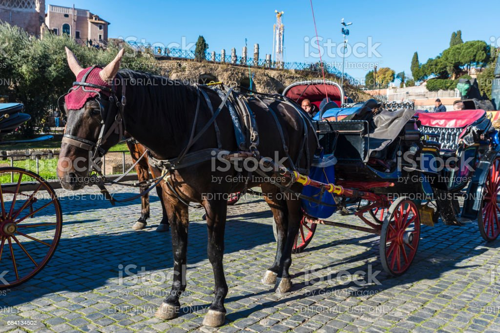 Horse carriage for tourists in Rome, Italy stock photo