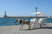 Horse carriage for transporting tourists