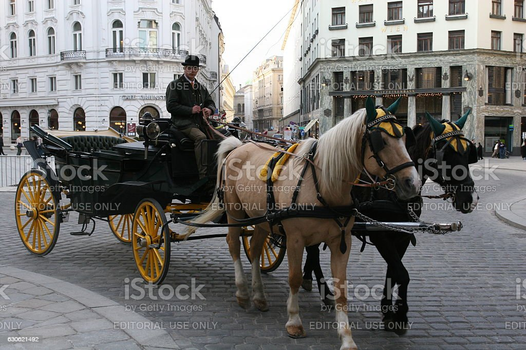 Horse carriage in Vienna, near Hofburg stock photo