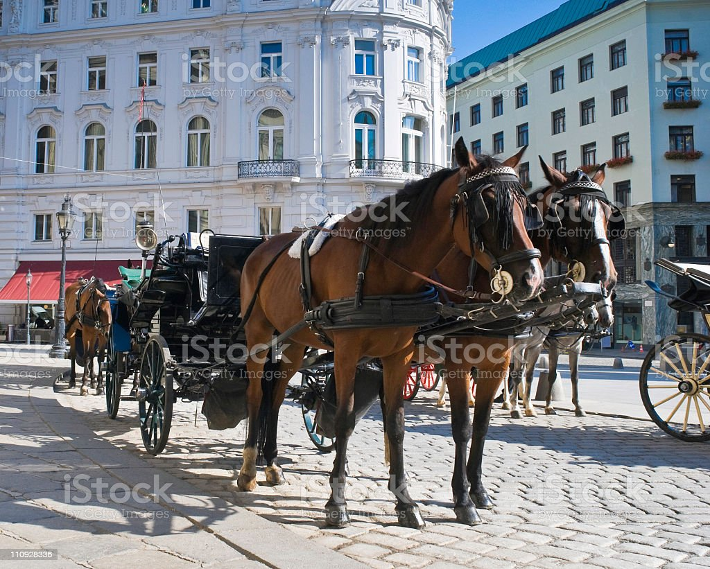 Horse carriage ready for Spanish riding school in Vienna stock photo