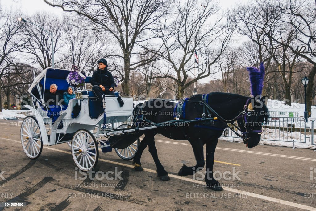 Horse carriage rider in Central Park. Horse drawn carriages are a wonderful way to visit the beauty of the Central Park. stock photo