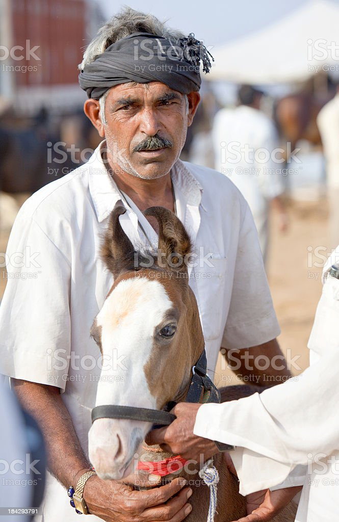 Horse dealers at Puskar market, India with an fidgety foal. stock photo