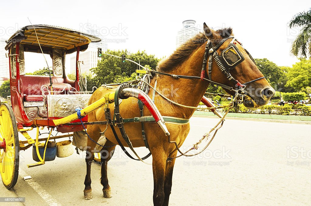 horse drawn carriage at Manila Metropolitan Cathedral-Basilica stock photo