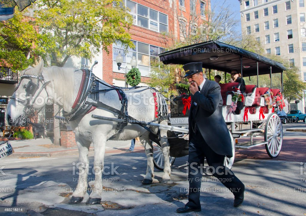 Horse Drawn Carriage in Wilmington stock photo