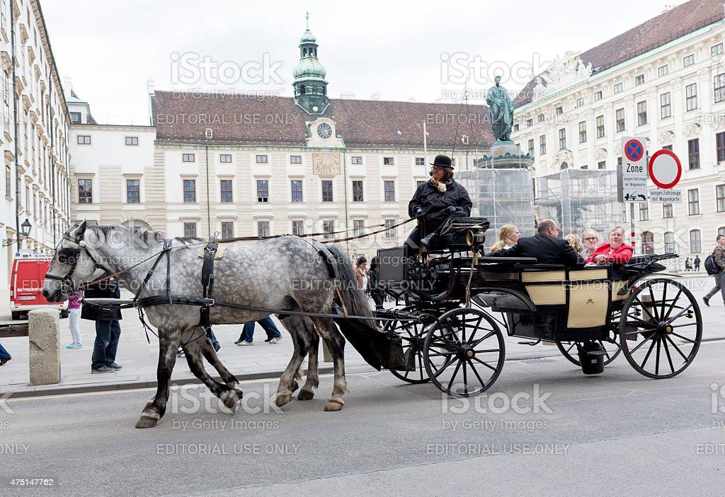 Horse drawn carriage Michaelerplatz stock photo