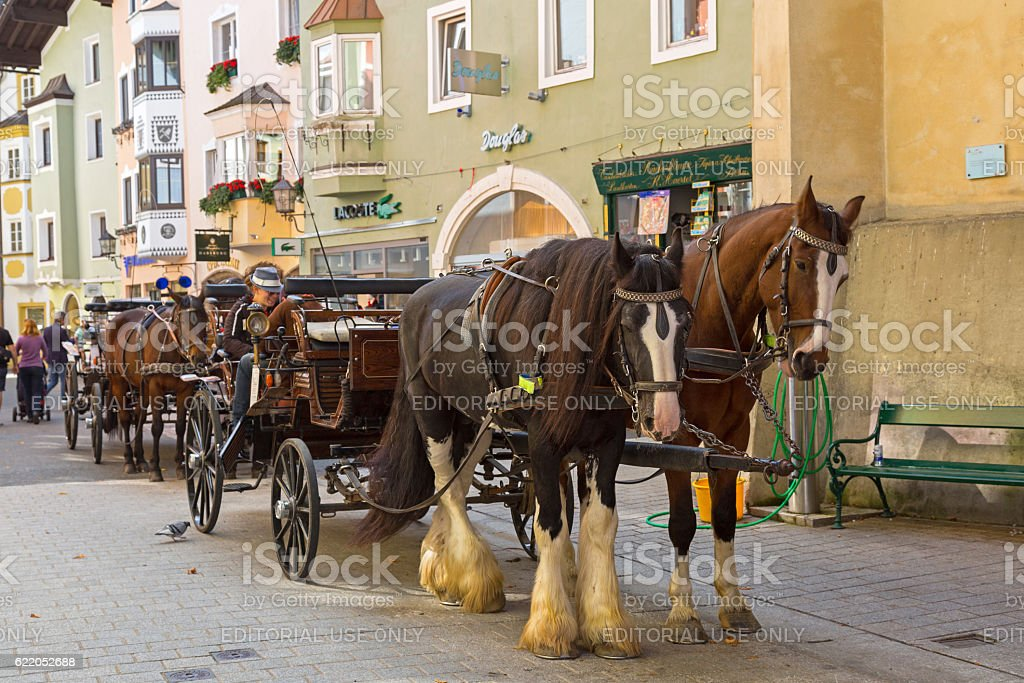 Horse drawn carriage with Gypsy Horse standing outside buildings, Austria stock photo