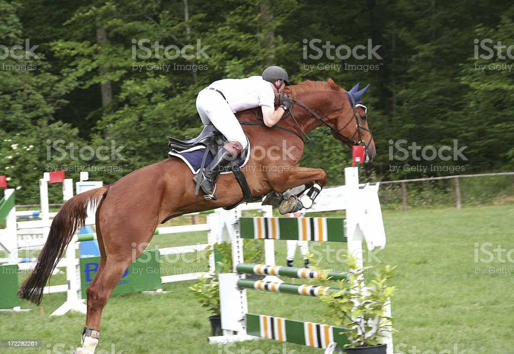 horse event royalty-free stock photo