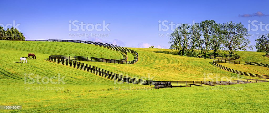 Horse farm fences stock photo