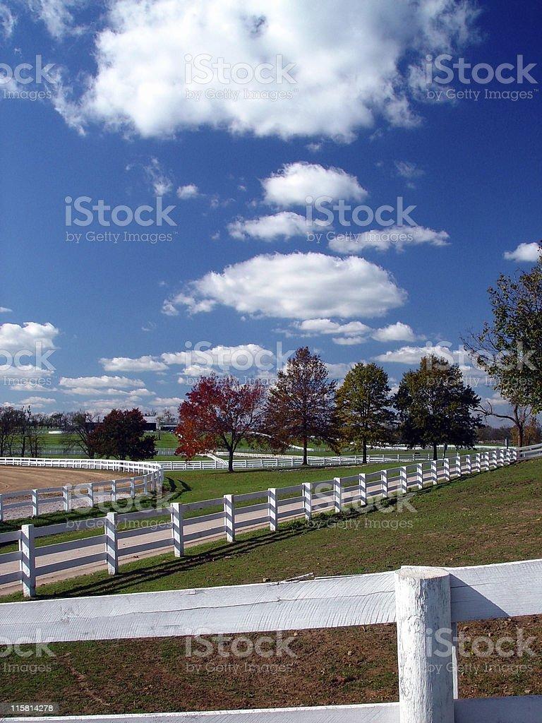 Horse Farm in Autumn royalty-free stock photo