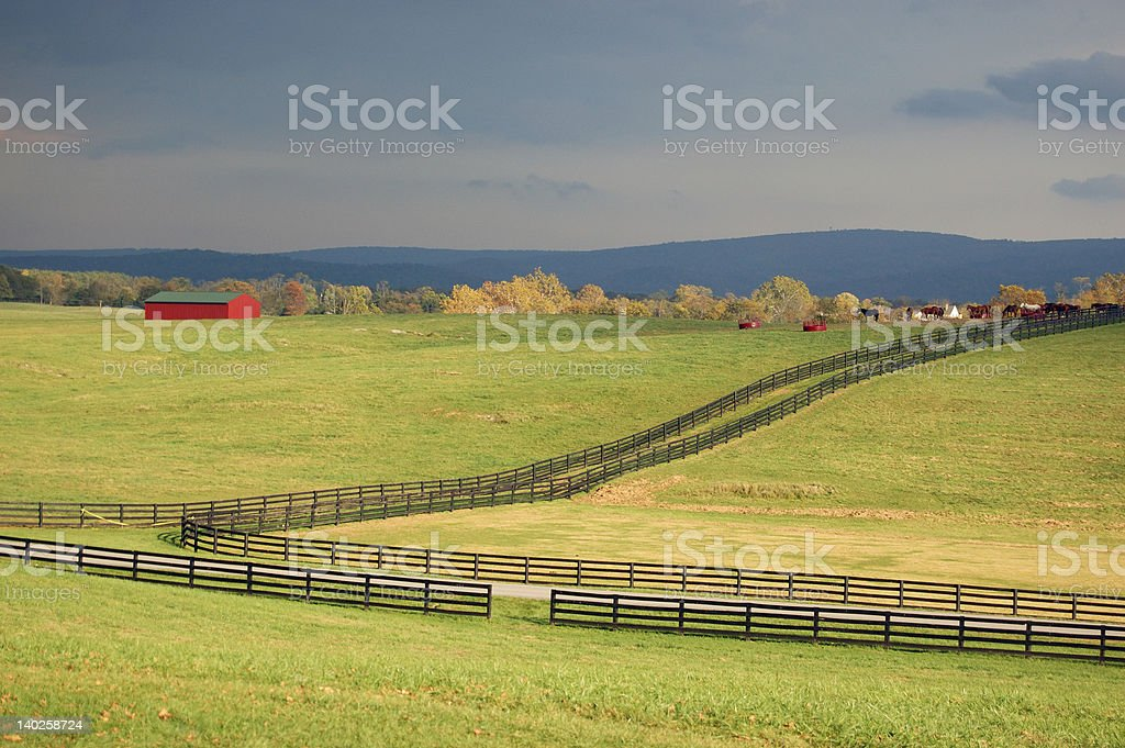 Horse farm, Virginia royalty-free stock photo