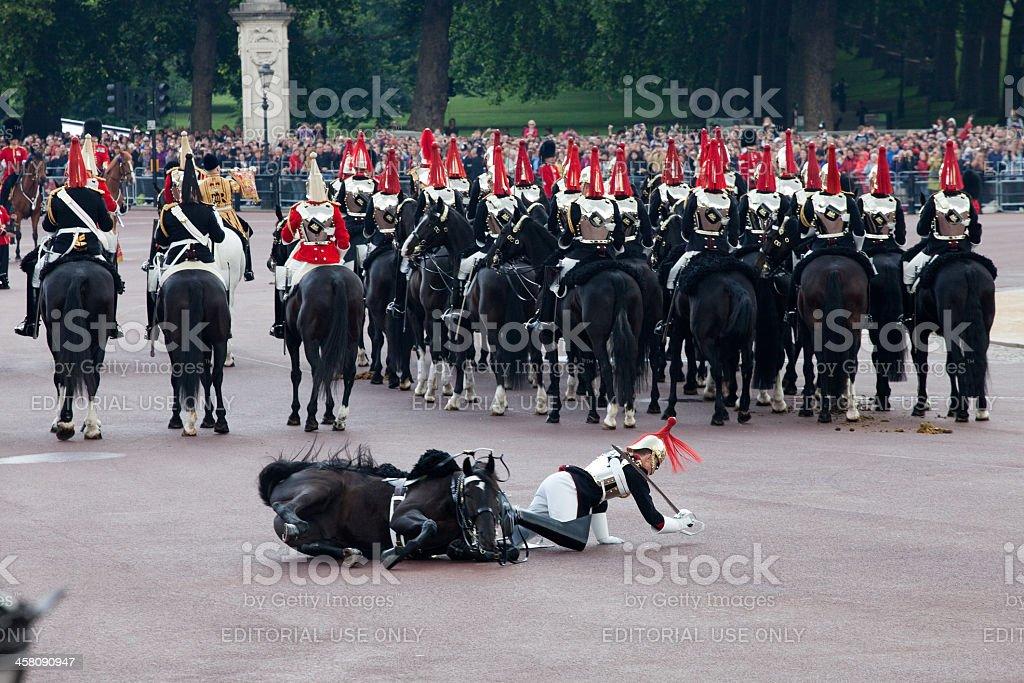 Horse guard fall stock photo