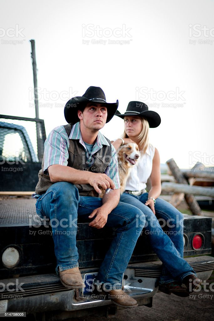 Horse herders on pick-up tailgate stock photo