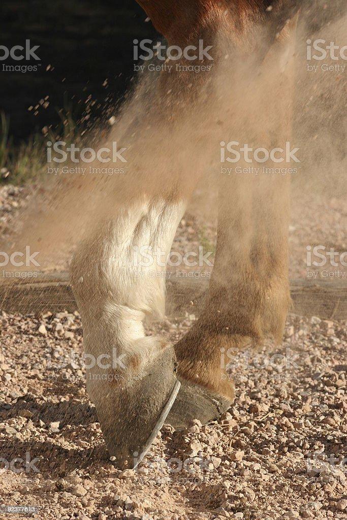 Horse Hooves Kicking Up Dust royalty-free stock photo