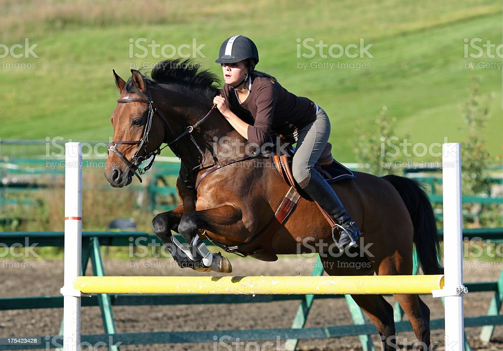 Horse jumping during an equestrian event royalty-free stock photo