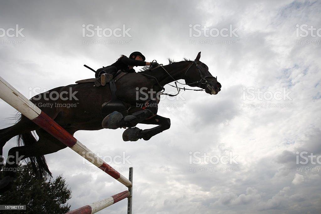 Horse jumping royalty-free stock photo