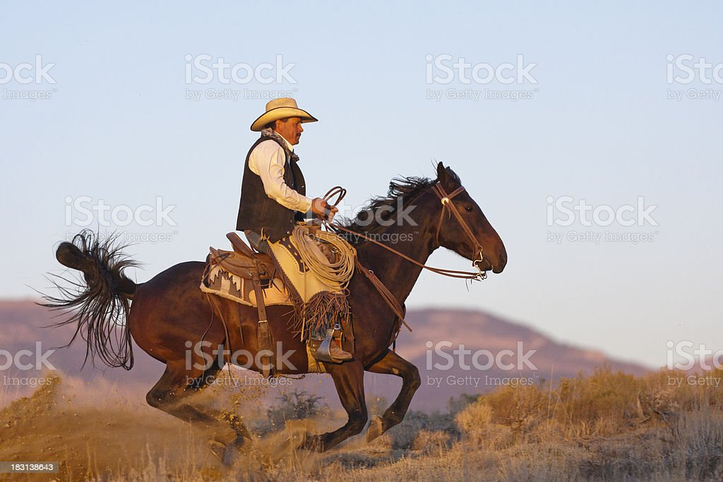 Horse kicks up dust as it streaks across frame stock photo