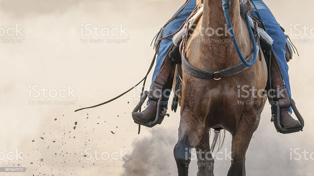 Horse legs Running stock photo