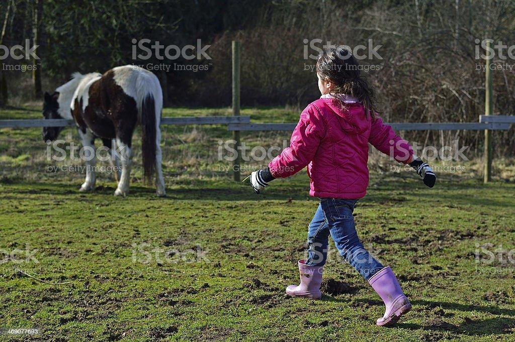 Horse Love royalty-free stock photo