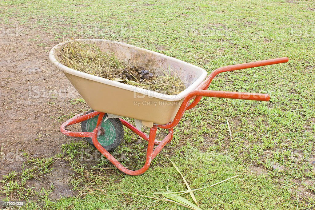 Horse manure in trolley. stock photo